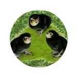 Baby Chicks in the Garden 3.5