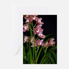 Greeting Cards (Pk of 10) -Cymbidium Orchid