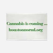 Funny Norml Rectangle Magnet (10 pack)