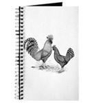 California Grey Chickens Journal