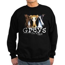 Greys Fan Funny Sweatshirt