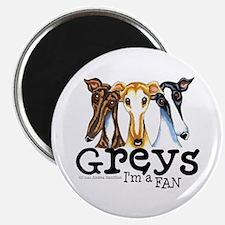 Greys Fan Funny Magnet