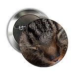 Sleeping fluff Button