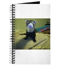 Ferrets 'R Fun Journal