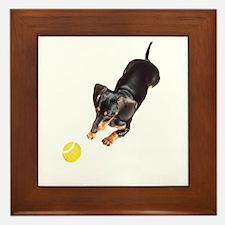 'Lily Plays Dachshund Dog' Framed Tile