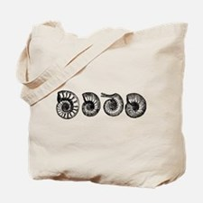 Ammonite Shells Tote Bag