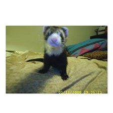 Ferrets4Pets Postcards (Package of 8)