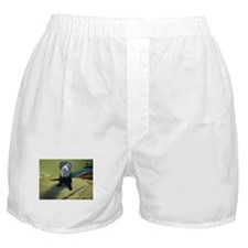 Ferrets4Pets Boxer Shorts