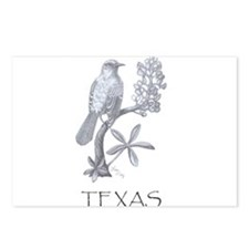 Texas Mockingbird/Bluebonnet Postcards (Package of