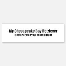 My Chesapeake Bay Retriever i Bumper Bumper Bumper Sticker