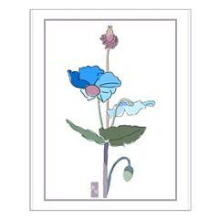 Blue Poppy Drawing Posters