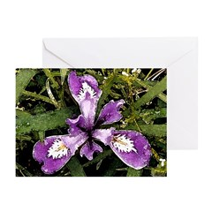 Pacific Coast Iris Greeting Cards (Pk of 10)