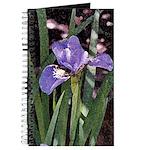 Siberian Iris Journal