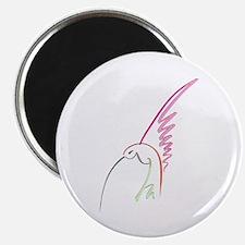 Hummingbird (Morning) Magnet