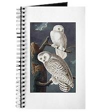 Snowy Owls Journal