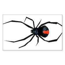 Redback Spider Decal