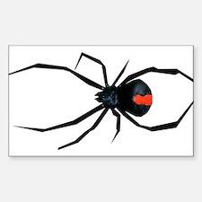 Redback Spider Sticker (Rectangle)