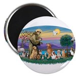 StFrancis-Dogs-Cats-Horse Magnet