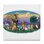 StFrancis-Dogs-Cats-Horse Tile Coaster