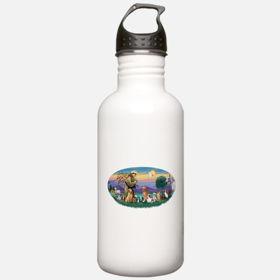 StFrancis-Dogs-Cats-Horse Water Bottle