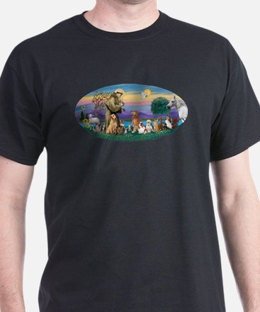 StFrancis-Dogs-Cats-Horse T-Shirt