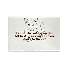 Feline Thermodynamics Rectangle Magnet