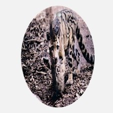 Clouded Leopard series 2 Oval Ornament