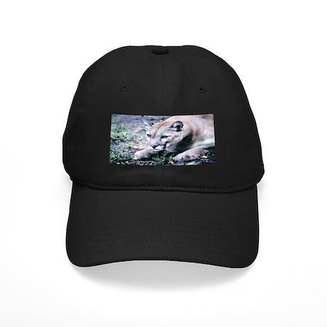 Cougar series 2 Black Cap