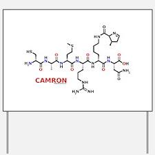Camron molecularshirts.com Yard Sign