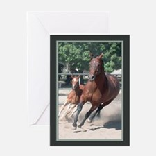Mare and Foal Birthday Card
