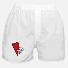 Maltese Lover Boxer Shorts