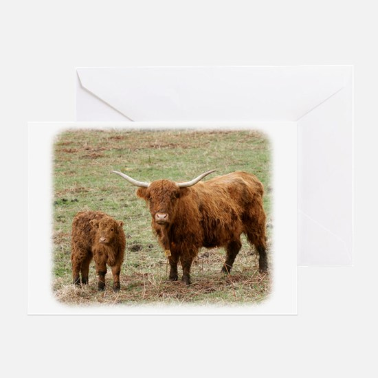 Highland Cow with calf 9Y316D-048 Greeting Card