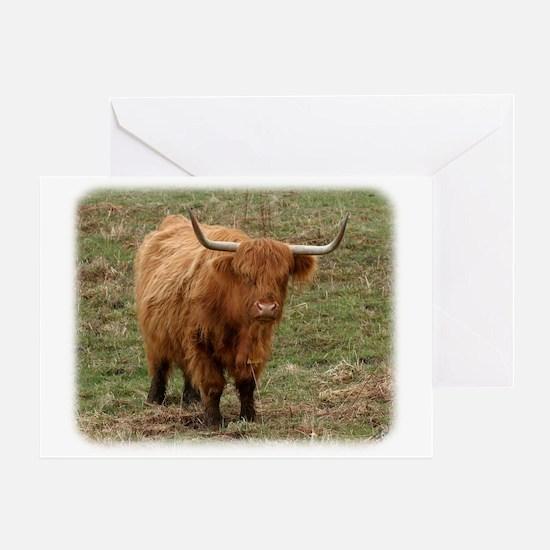 Highland Cow 9Y316D-053 Greeting Card