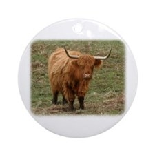Highland Cow 9Y316D-053 Ornament (Round)