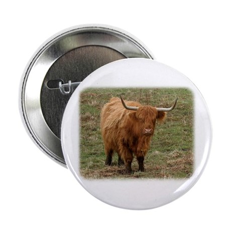 """Highland Cow 9Y316D-053 2.25"""" Button"""