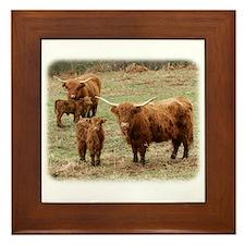 Highland Cattle 9Y316D-055 Framed Tile