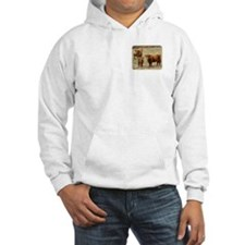 Highland Cattle 9Y316D-055 Hoodie