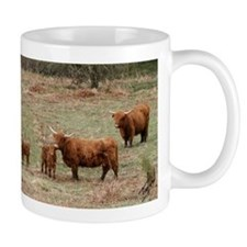 Highland Cattle 9Y316D-007 Mug