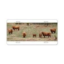 Highland Cattle 9Y316D-007 Aluminum License Plate
