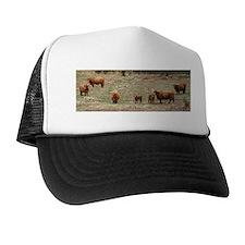Highland Cattle 9Y316D-007 Trucker Hat