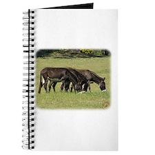 Donkeys 9R018D-012 Journal