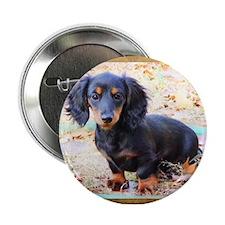"""Puppy Love Doxie 2.25"""" Button"""