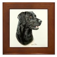 Labrador Retriever (black) Framed Tile