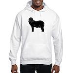 Bearded Collie Silhouette Hooded Sweatshirt