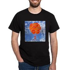Blue Sky CRPS RSD Balloons T-Shirt