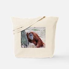 Tote Bag - Orangutan 1