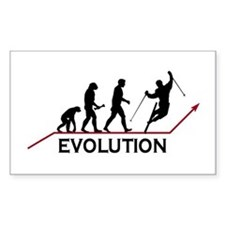 Skiing Evolution Decal