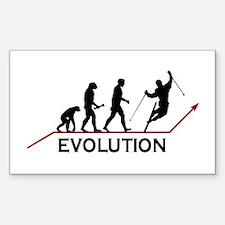 Skiing Evolution Decal