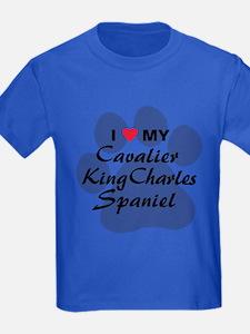 Cavalier King Charles T