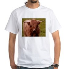 Scottish Highland Cow Shirt